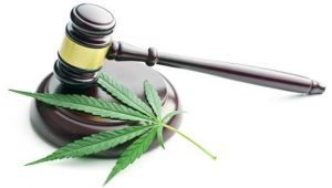 cannabis-leaf-and-gavel