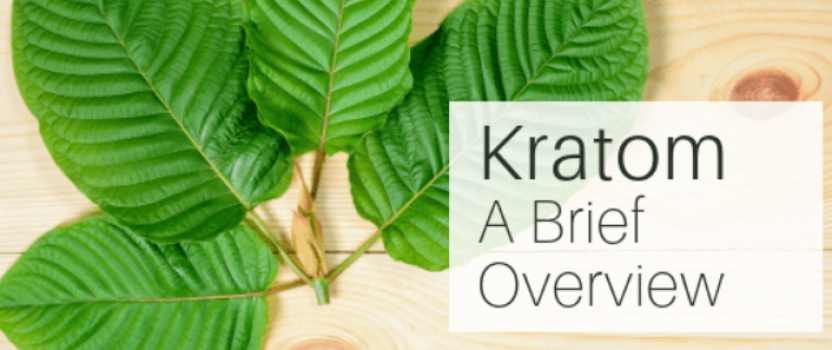 Is Kratom Extract the Next big thing ?